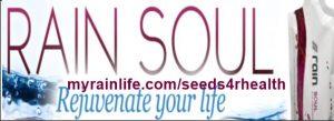 rain soul logo